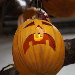 Faux Pumpkin Exhibit Element