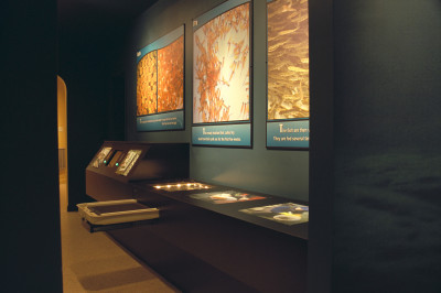 Interactive Science Displays