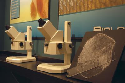 Interactive Science Displays